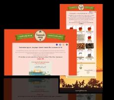 Страница-визитка компании Умный мёд